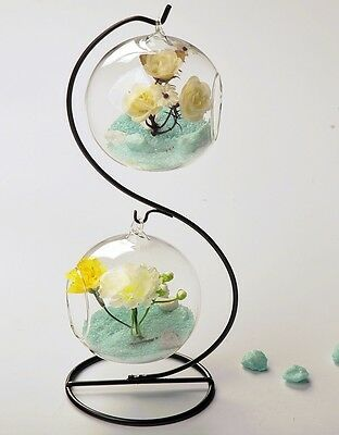 Glass hanging globe terrarium for air plant moss wedding gift candle decor stand
