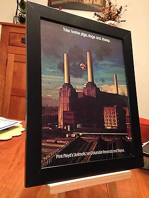 "Framed Original & Rare Pink Floyd ""animals"" Lp Album Cd Promo Ad"