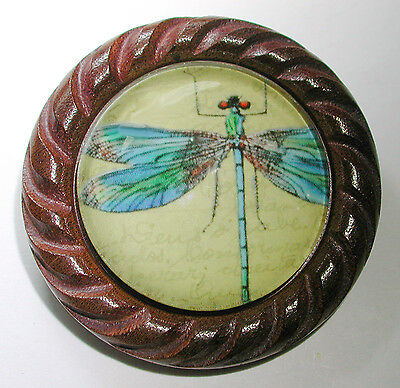 Large Glass Dome Button Set in Carved Wood  Insect Dragonfly 1 & 5/8""