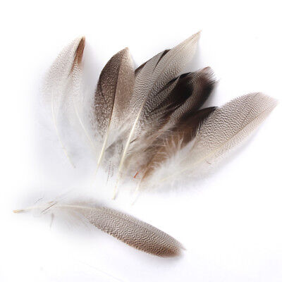 "20 MALLARD DUCK FLANK FEATHERS 3.5-5"" for Fly Tying Millinery Dreamcatcher"