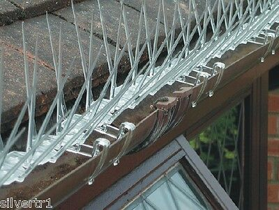 BIRD & PIGEON GUTTER ATTACHING EXTRA WIDE SPIKES 2 METRE PACK - anti roosting