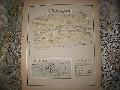 Mint Antique 1873 Nescopek Township Luzerne County Pennsylvania Handcolored Map