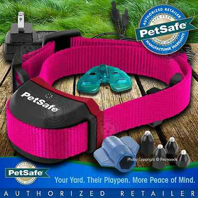 PetSafe Stubborn Stay + Play Rechargeable Wireless PIF00-13672 Pink Dog Collar