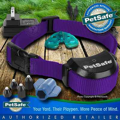 PetSafe Stay and Play Rechargeable Dog Wireless Collar Purple Strap PIF00-14288