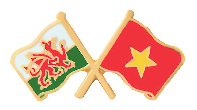 Vietnam Flag & Wales Flag Friendship Courtesy Pin Badge - T1194