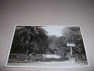 1910s PIERPOINT SIGN RESORT? STREET? TOWN? ANTIQUE REAL-PHOTO RPPC POSTCARD