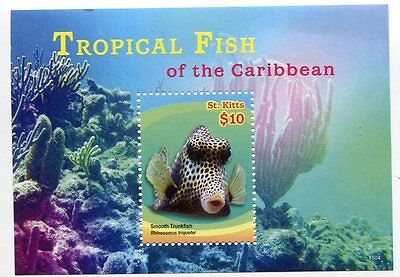 St. Kitts Stamp 2014 Tropical Fish Of The Caribbean Sheet #1