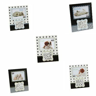 assorted pet dog or cat photo frames