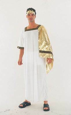 Ancient Man, Greek, Roman Toga, Ceasar Fancy Dress Costume #us