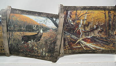 DEER DOE and BUCK HUNTING OUTDOORS  wall border 8 1/2""