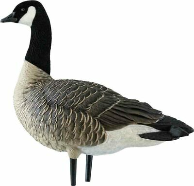 Avian-X Axf Outfitter Flocked Canada Goose Lesser Decoy 12 Pack With Bag 9033