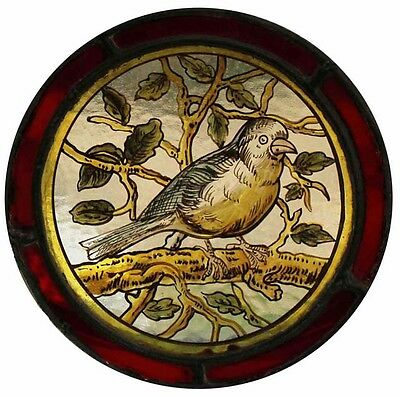 Beautiful Large Rare Painted Bird Antique English Stained Glass Roundel
