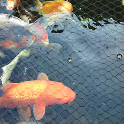 Pond Cover Net Garden Koi Fish Pond Pool Netting Fox Heron Protector Multi Size