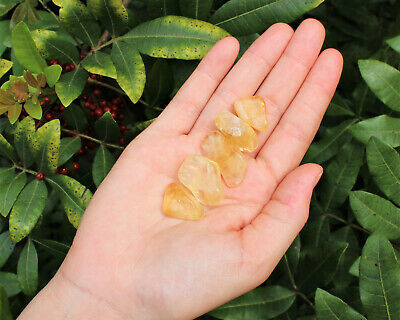 Citrine Tumbled Stone: 5 (Five) Medium Pieces (Crystal Healing Gemstone Wicca)