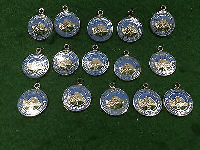 Lot of 5 Vintage Boy Scouts Philmont Ranch Anniversary Charms