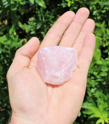 "Single LARGE Rough Rose Quartz Raw Crystal Love Stone Natural Specimen (2""-3"")"