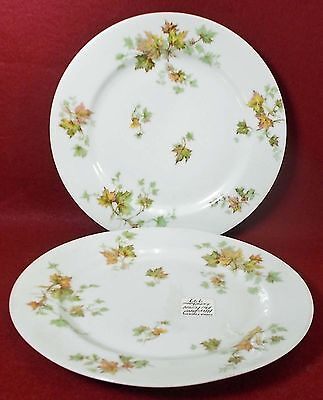 HAVILAND china AUTUMN LEAF France LUNCHEON PLATE Set of Two (2) - 8- & HAVILAND CHINA AUTUMN LEAF France LUNCHEON PLATE Set of Two (2) - 8 ...