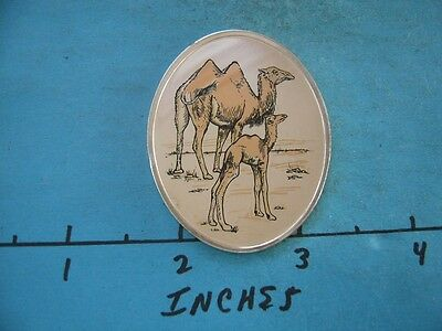 1.3 Oz Bactrian Camel Colored Oval Wildlife Of World Collection Silver Rare