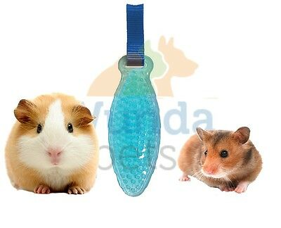 Rosewood Rubber Gentle Massage Small Animal Hamster Rabbit Grooming Brush 19327