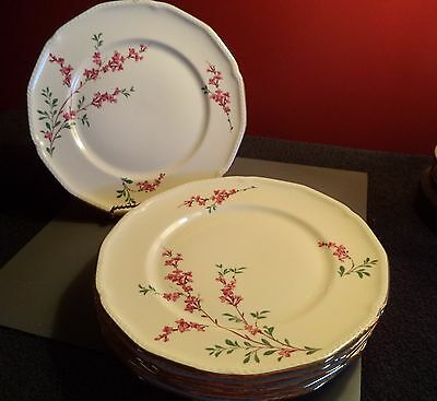 "6 Dinner Plates (8-1/2"") w/Pink Flowers/Royal Bayreuth"