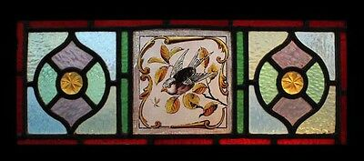 Pretty Antique English Painted Bird & Dragonfly Transom Stained Glass Window