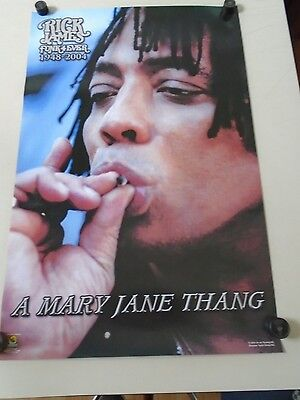 Rick James / Orig. Vintage Poster - Fun Forever #1095 - Exc.New cond.- 22 x 34""