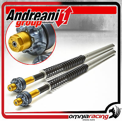Andreani Misano Fork Cartridge Kit 105/Y07 Yamaha MT-09 Tracer