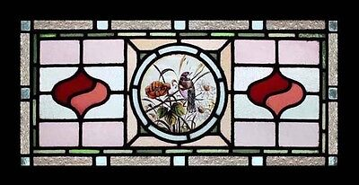 Rare English Victorian Painted Bird In Foliage Antique Stained Glass Window