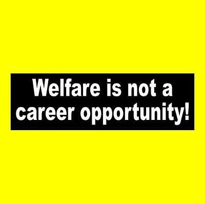 "New ""WELFARE IS NOT A CAREER OPPORTUNITY"" conservative BUMPER STICKER republican"