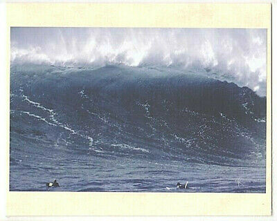 "Waimea Bay ""big Wednesday"" 1998 Closeout Wave Giclee Photo On 8X10"" Biege Matt"