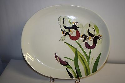 "Vintage Red Wing Pottery Iris 13"" Oval Serving Platter Plate"