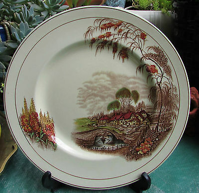 Stunning Vintage Wilkinson Royal Staffordshire Cabinet Plate Rural Scenes