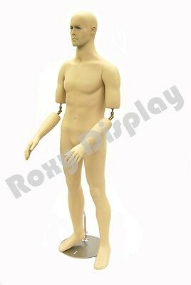 Male Fiberglass Mannequin Manequin Manikin Dress Form Display #MD-BC10
