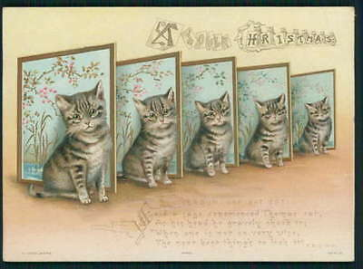 art Helena Maguire Tabby Cat screen Victorian Greeting Card original 1890s litho