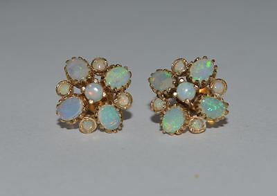 New 9ct yellow gold natural cluster opal  stud earrings