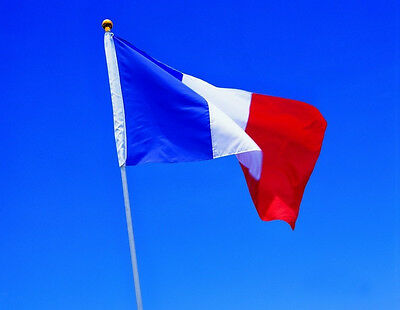 France Republic Banner Indoor Outdoor Hot Large 3ft x 5ft French Flag Polyester