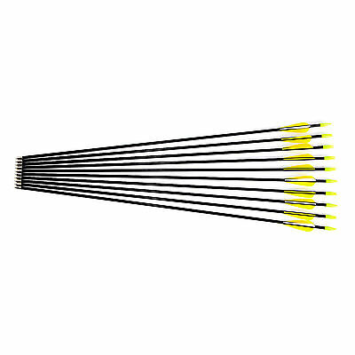 10 Black Fibreglass Archery Arrows Target & Field Broadhead Tip 31 inch