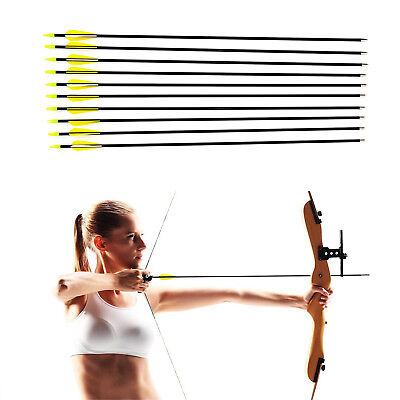 "New Fibreglass 31"" Carbon Grade Steel Tip Archery Arrows Nocks Suits Most Bows"