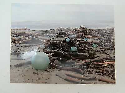 Japanese Glass Float Fish Net Buoy Bouy Beachcombing Beach Post Card