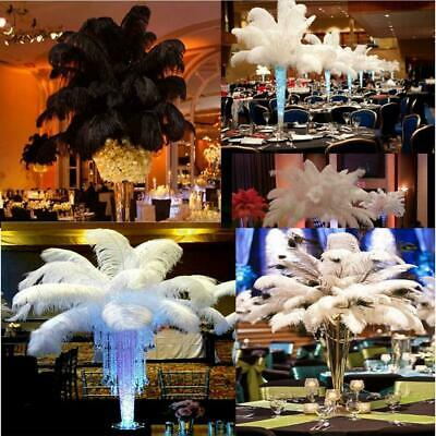 New Wholesale 10pcs Natural Ostrich Feathers 10-12inch/26-31cm White/Black