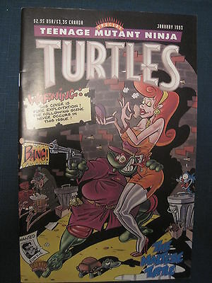 Teenage Mutant Ninja Turtles 1993 Special, One-Shot. Eastman & Laird. Mirage
