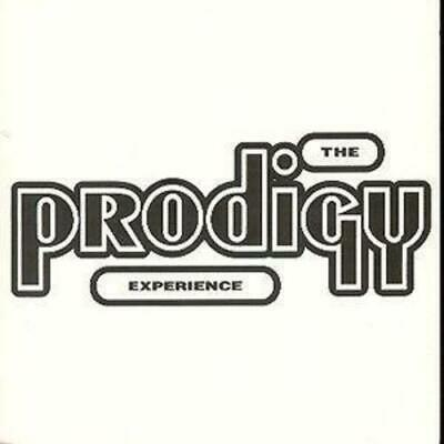 The Prodigy : The Prodigy Experience CD (1992)