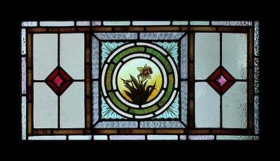 Beautiful Rare Painted Lakeland Daffodil Antique English Stained Glass Window