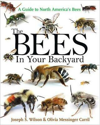 The Bees in Your Backyard by Joseph S. Wilson Paperback Book (English)