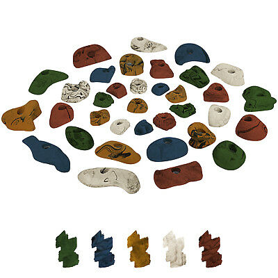 35 Climbing Holds in a Starter Set for Children