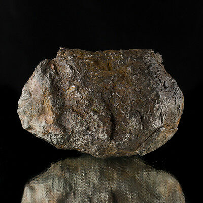 """4.2"""" 1292g 2.8LB Nickel-Iron METEORITE from Witnessed Fall in1516 China for sale"""