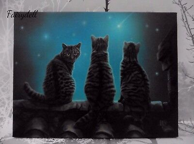 'wish Upon A Star'  Lisa Parker 3 Cat Design Canvas Wall Plaque