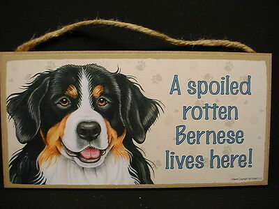 BERNESE A Spoiled Rotten MOUNTAIN DOG Art SIGN wood HANGING WALL PLAQUE puppy