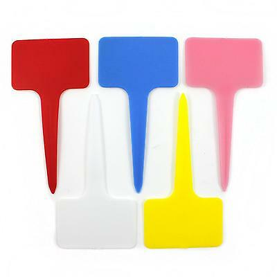 20x Plastic T Shape Tag Markers Nursery Garden Classify Plant Flower Care Labels