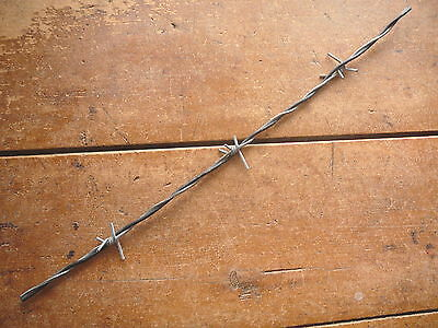 Dodge & Washburn 4-Point Long Barbs Steel & Plastic Lines - Antique Barbed Wire